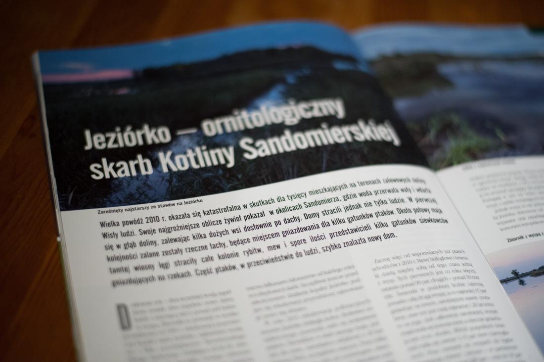 Jeziórko - Ornitologiczny skarb Kotliny Sandomierskiej